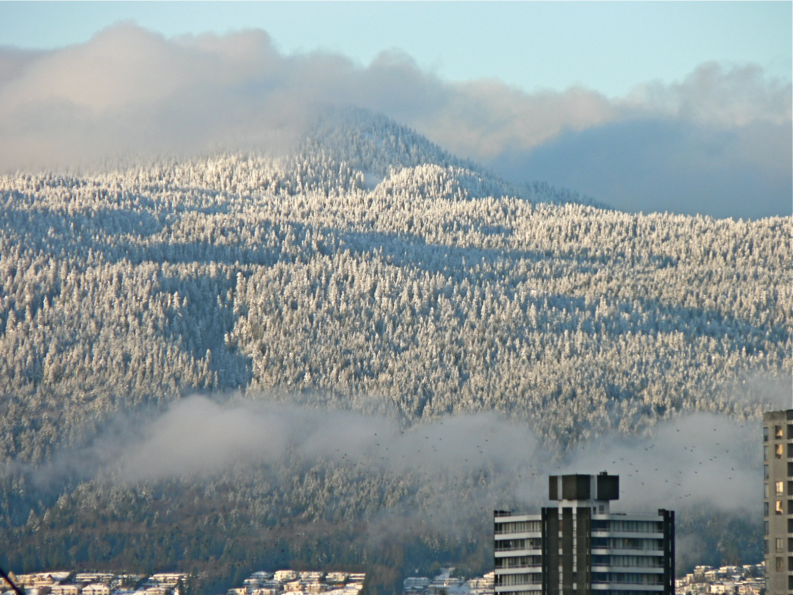 Snow In the Mountains In Vancouver